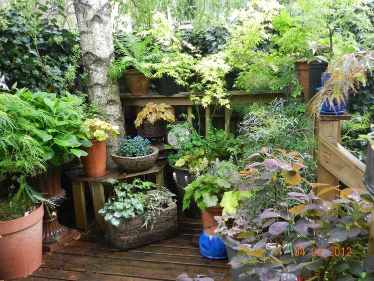 Deck - Roofdecks and decksLearn more about roofdeck and deck gardensView deck garden gallery