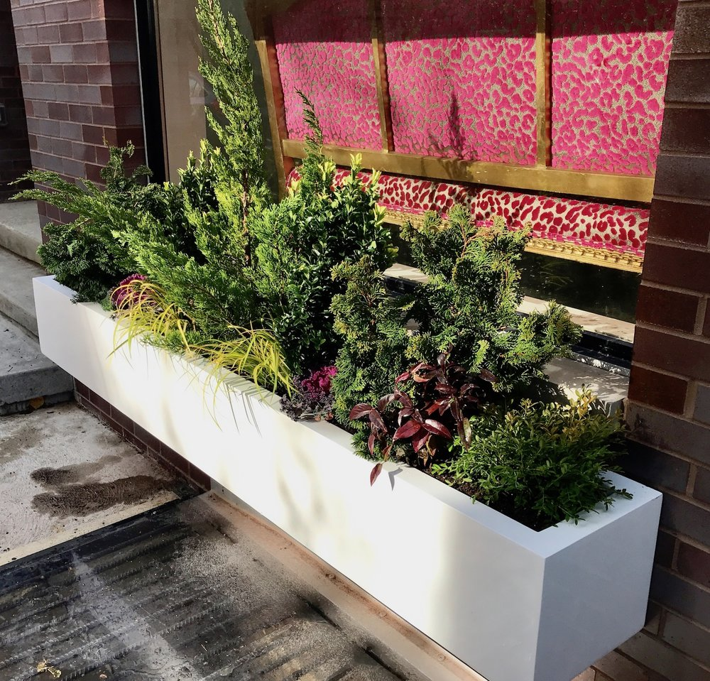 Evergreen Window Box AFTER