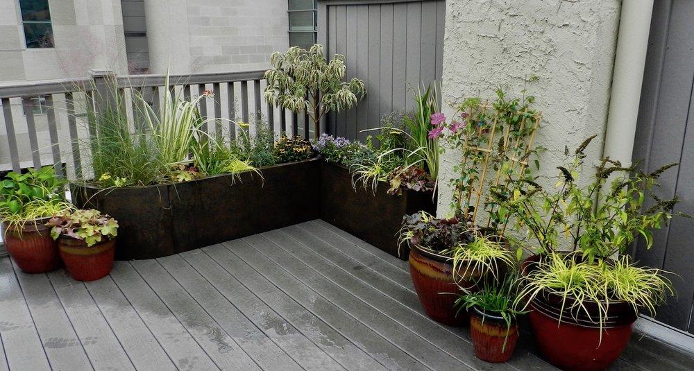 Roof Deck AFTER (December Installation)