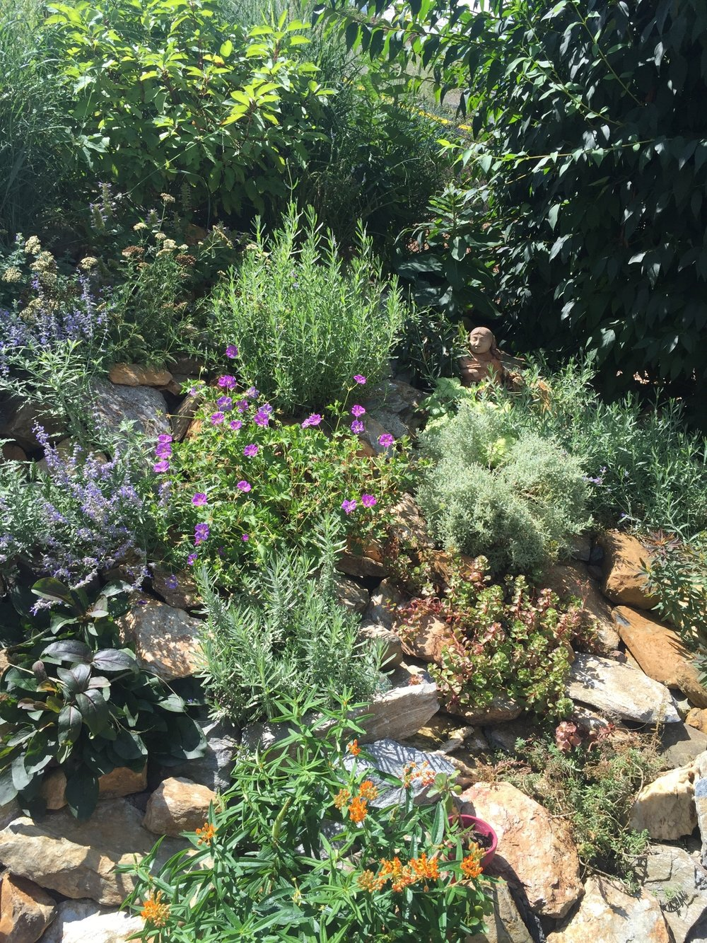 Hill / Rock Garden AFTER