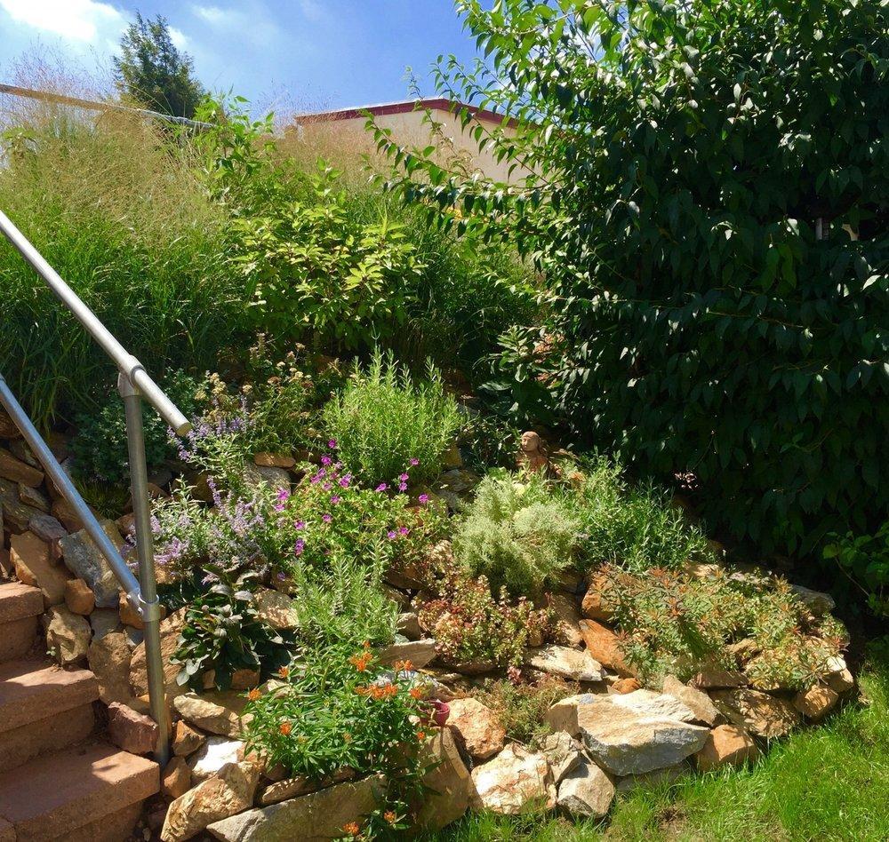 Bridgeport Backyard Hill / Rock Garden