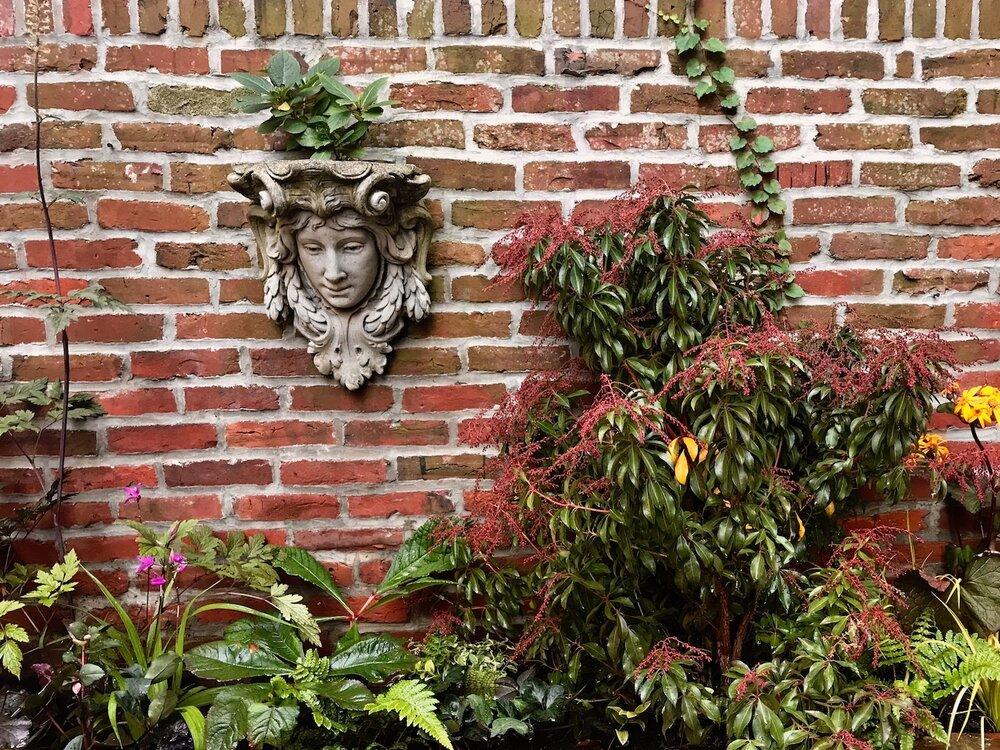 Delancey Courtyard Pieris