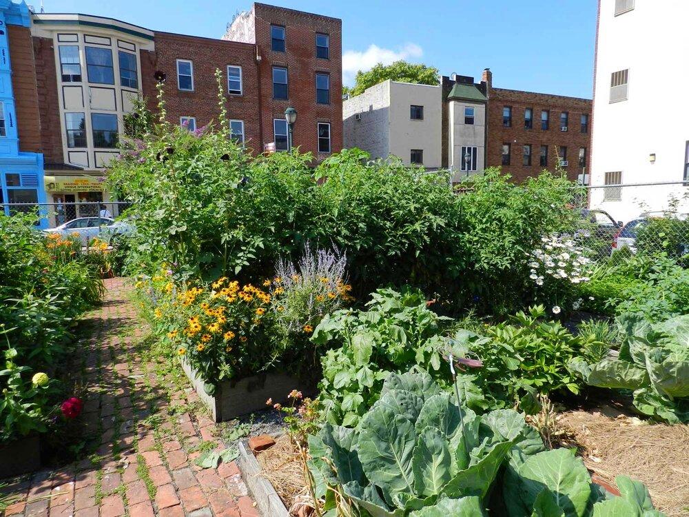 Community-Garden.jpg