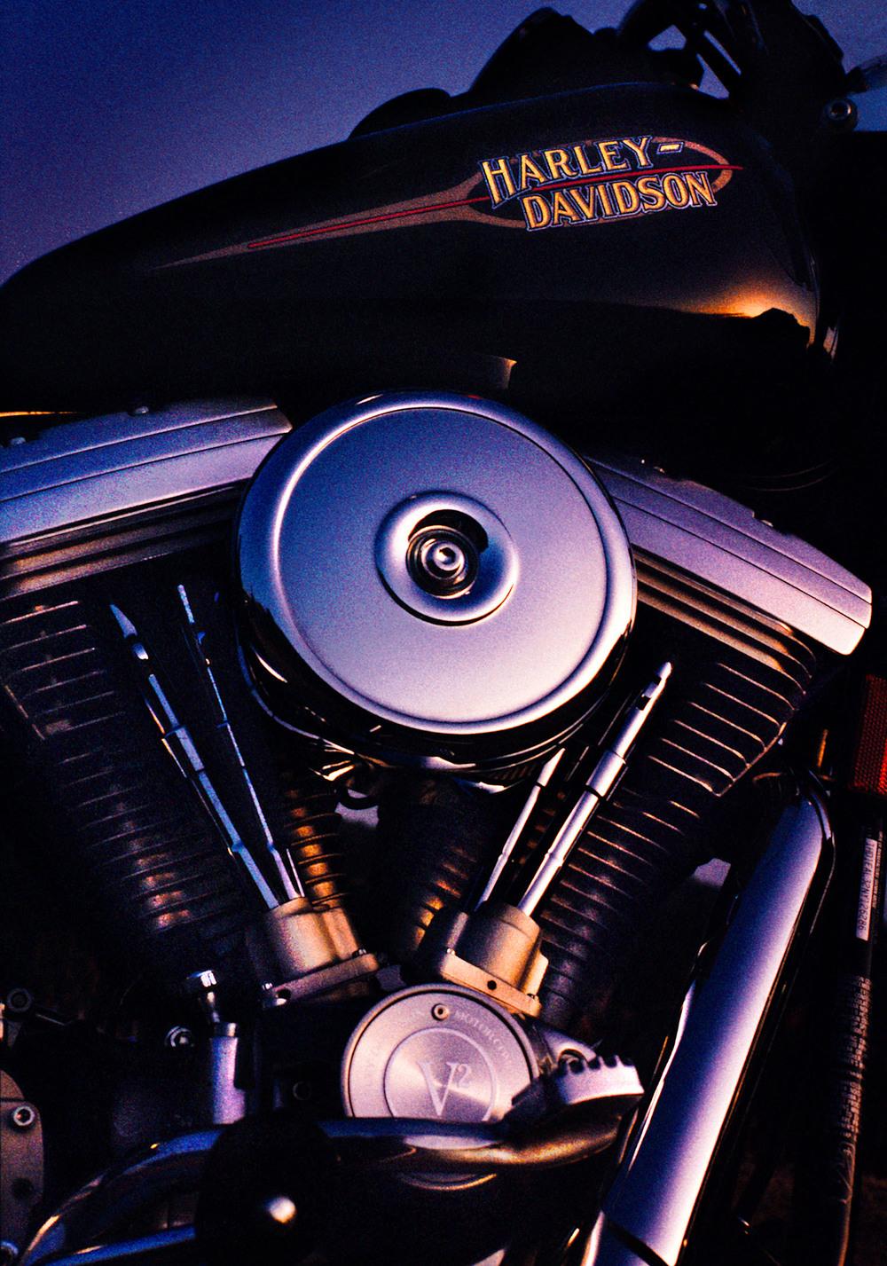 Natural Harley.jpg