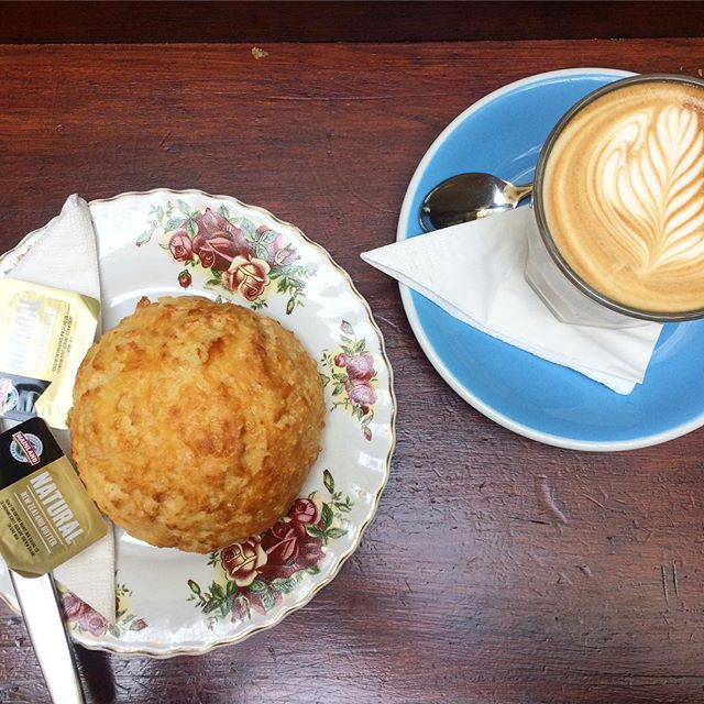 Our cheese scones are famous in Wellington! Come in & see what all the hype is about for yourself! 😍