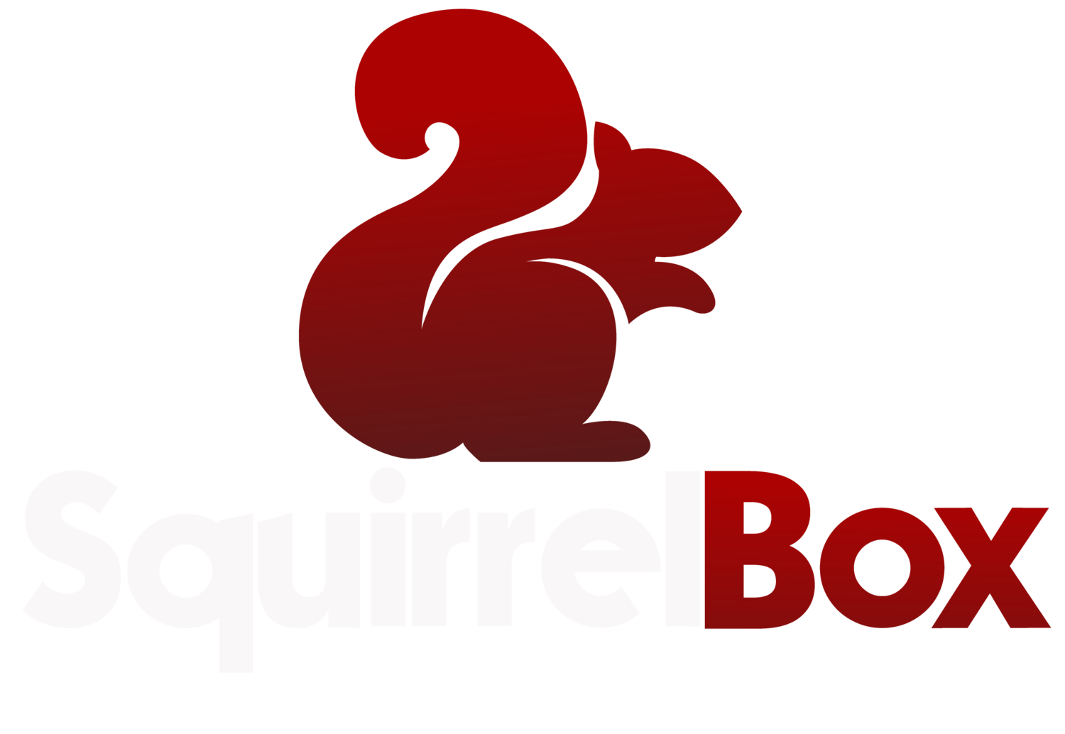 Valet Storage in Denver | SquirrelBox