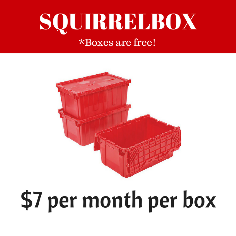 SquirrelBox Price.png