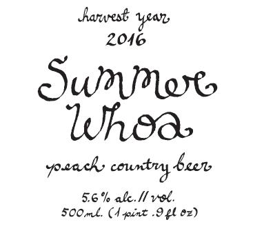 SUMMER WHOA // 2016