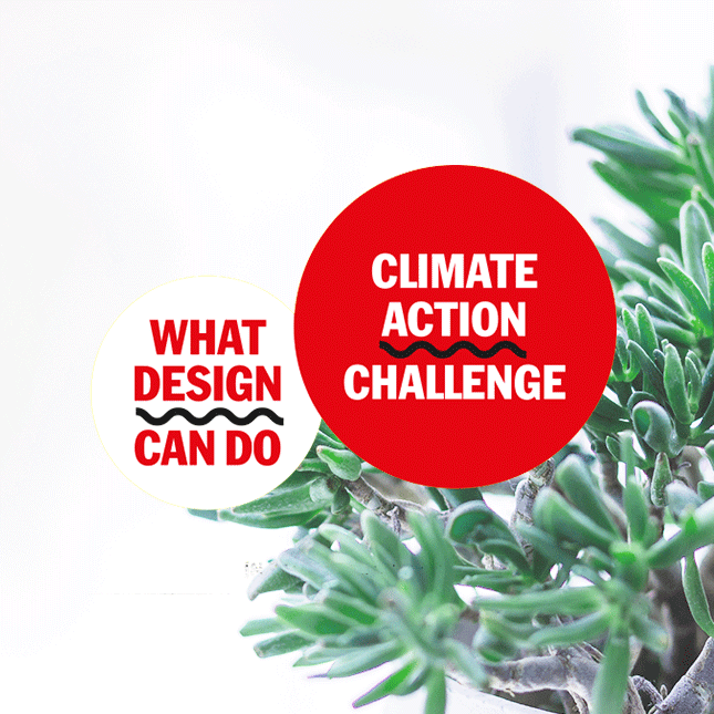 Climate Action Challenge Winner