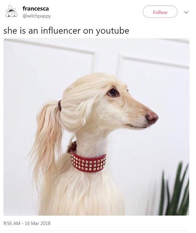 she's an influencer on youtube.jpg