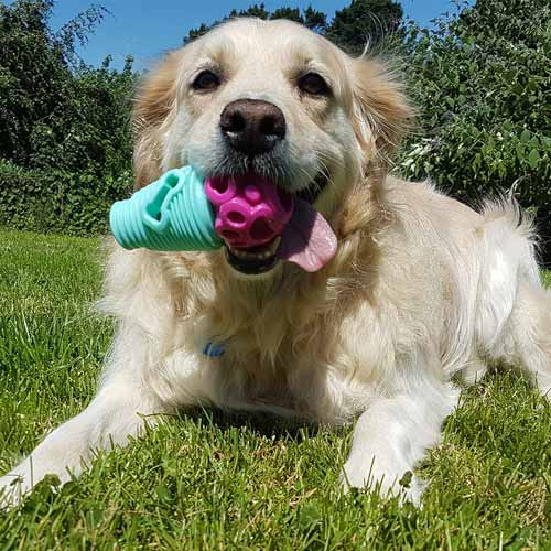 Safe-Fetch-dog-toys-20.jpg