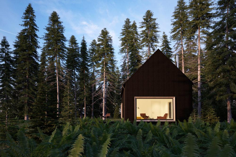 Secret Forest Retreat for an Artist