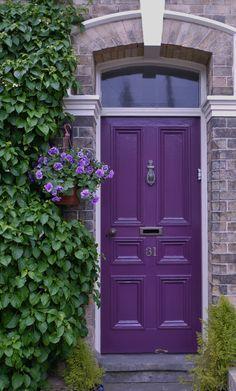 Purple - Bold & Spontanious