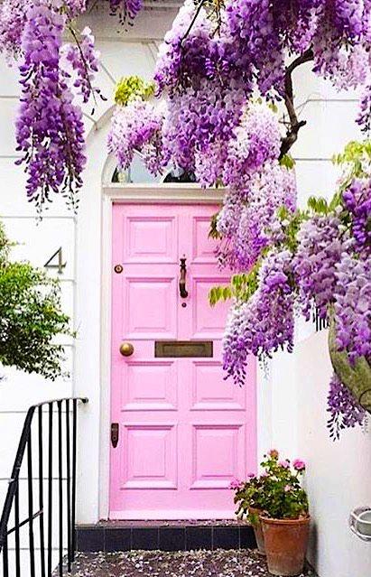 Pink - Fun-loving & Adventurous
