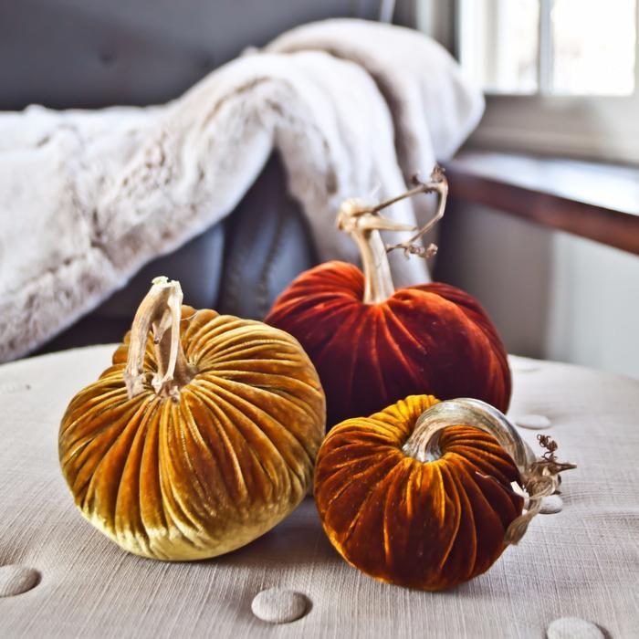 autum pumpkin.jpg