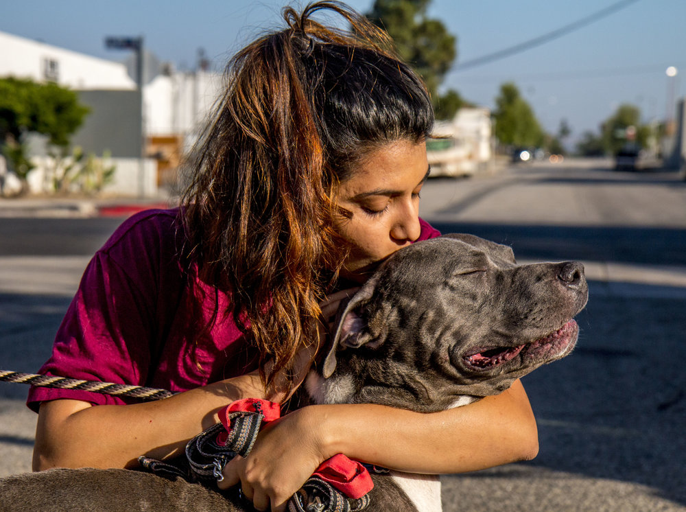 Shafali Grewal gives Reggie a kiss on his head at the first drop off site. Grewal was dropping off four dogs from the Inland Valley Human Society.