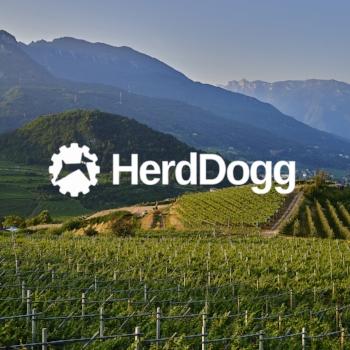 HerdDogg.jpg