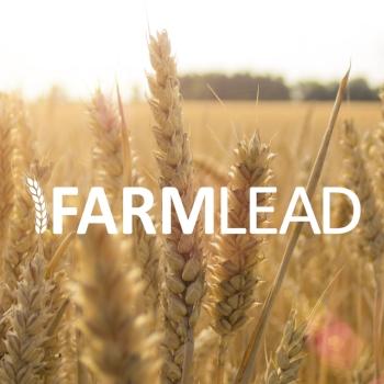 Farmlead Grain copy.jpg