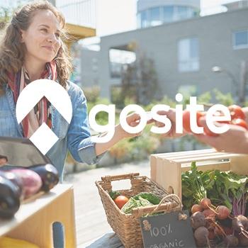 GoSite Photo copy.jpg