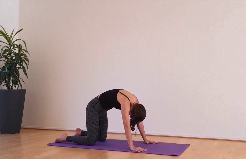 Flow-Yoga-Promo-Photo-7.jpg