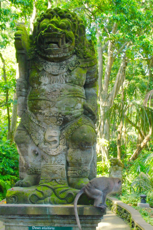Bali36.jpg