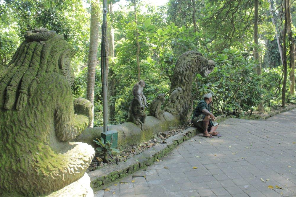 Bali40.jpg