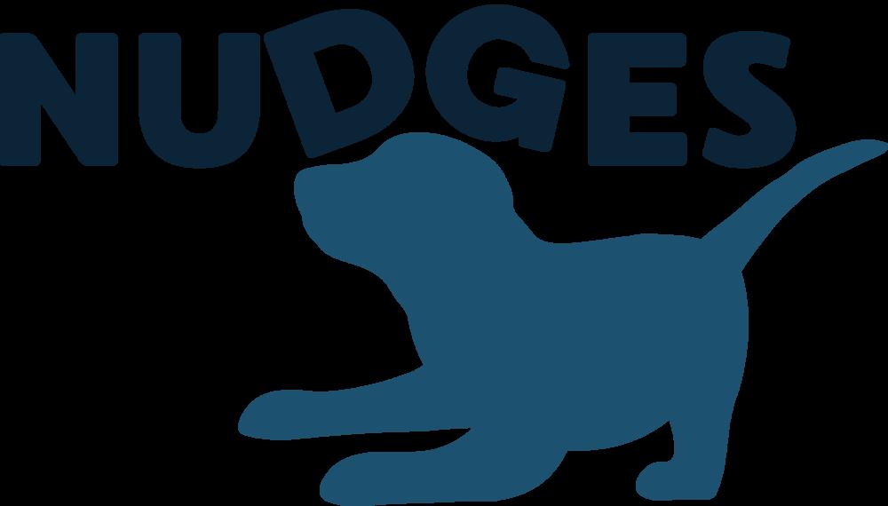 nudges.png