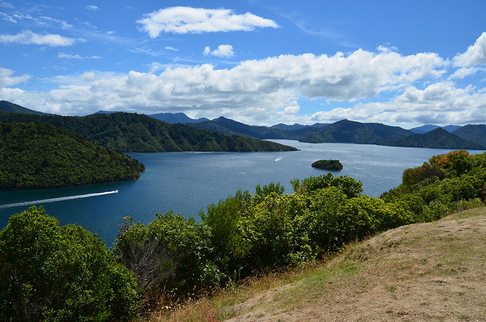The Marlborough Sounds