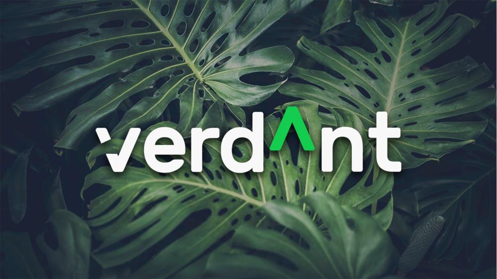 VERDANT |  Brand Identity