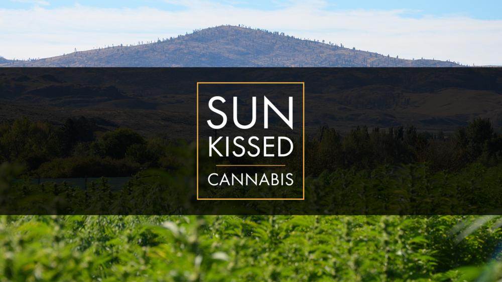 SUN KISSED CANNABIS |  Brand Identity