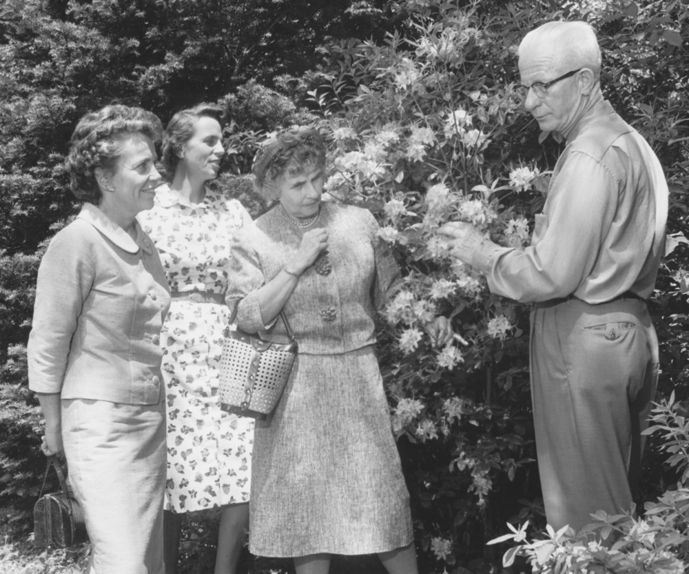SLGC field trip to Davey Tree Company in Kent, OH in 1963. Mrs. Farrand Taplin, Mrs John Calfee (Nancy) and Mrs. Edmund Rogers with Homer Jacobs, a wonderful horticulturist who later worked at Holden Arboretum.