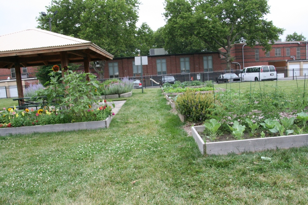 CBG Green corps Central Learning Farm 2.JPG