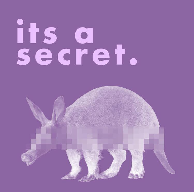 SECRET AARDVARK