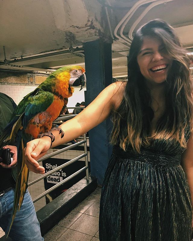 A nyc moment...when @jojoxoxopp becomes friends with a random man who has a bunch of birds in the subway and @rupaloop starts crying with a random women who starts sharing her story (zoom in the back)