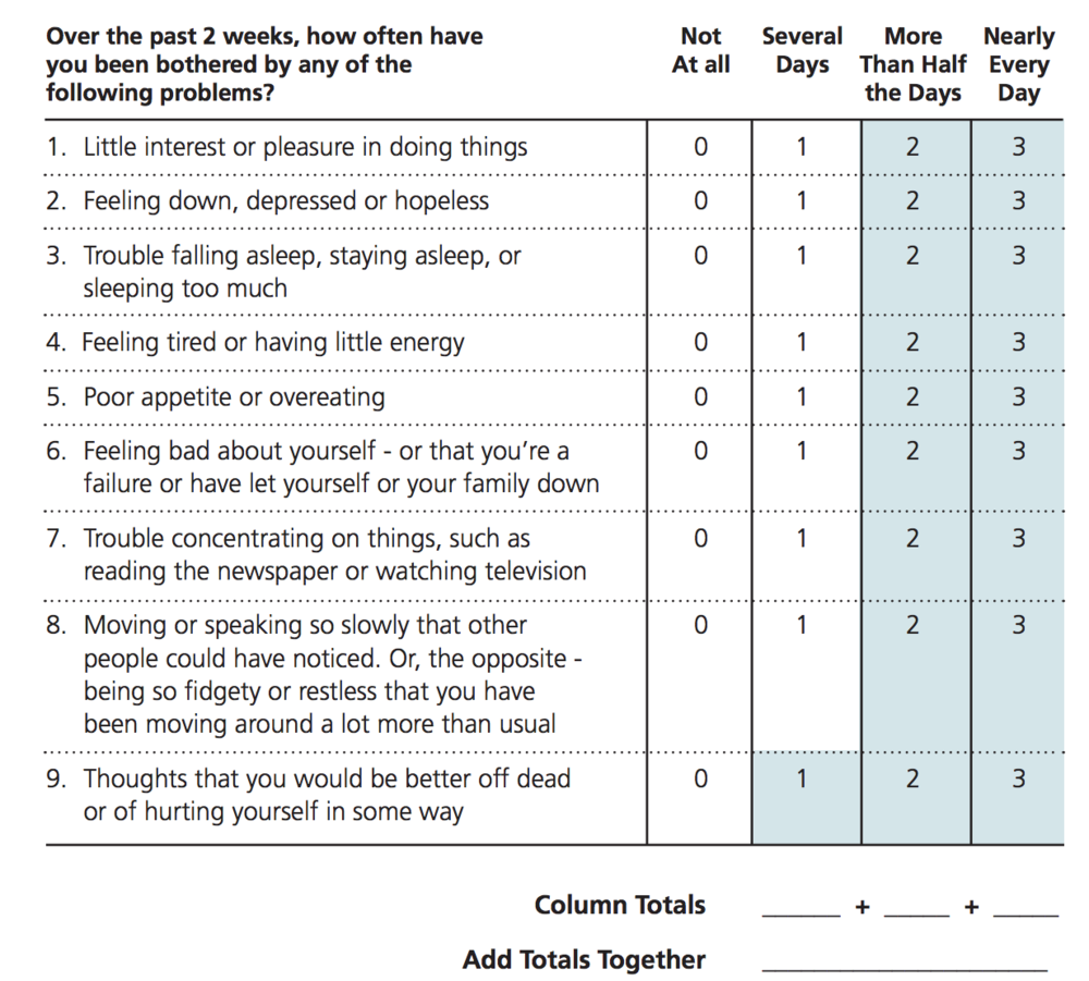 The Patient Health Questionnaire (PHQ-9)