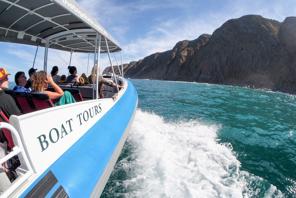 boat cruising at waitpinga cliffs
