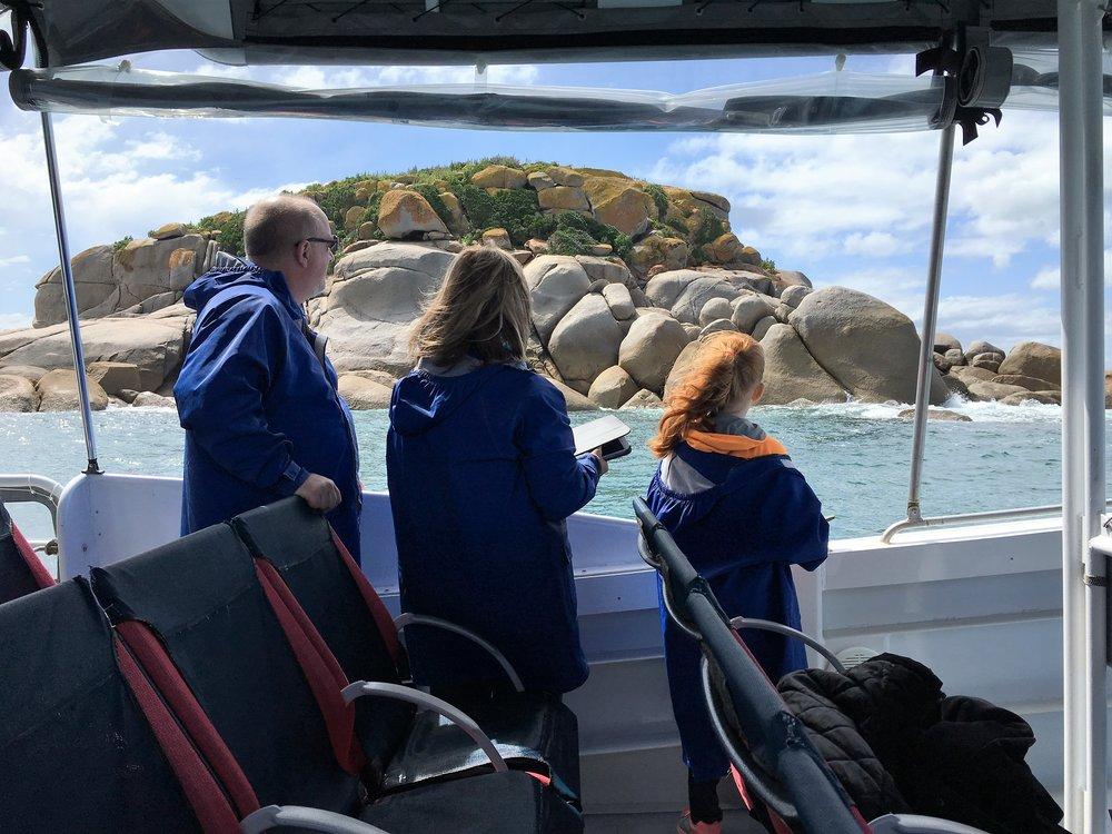 Seal Island Tour