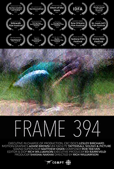 FRAME 394, dir. Rich Williamson, Canada (DOCUMENTARY) - Frame 394 follows a young man from Toronto who entangles himself in one of America's most high-profile police shootings.