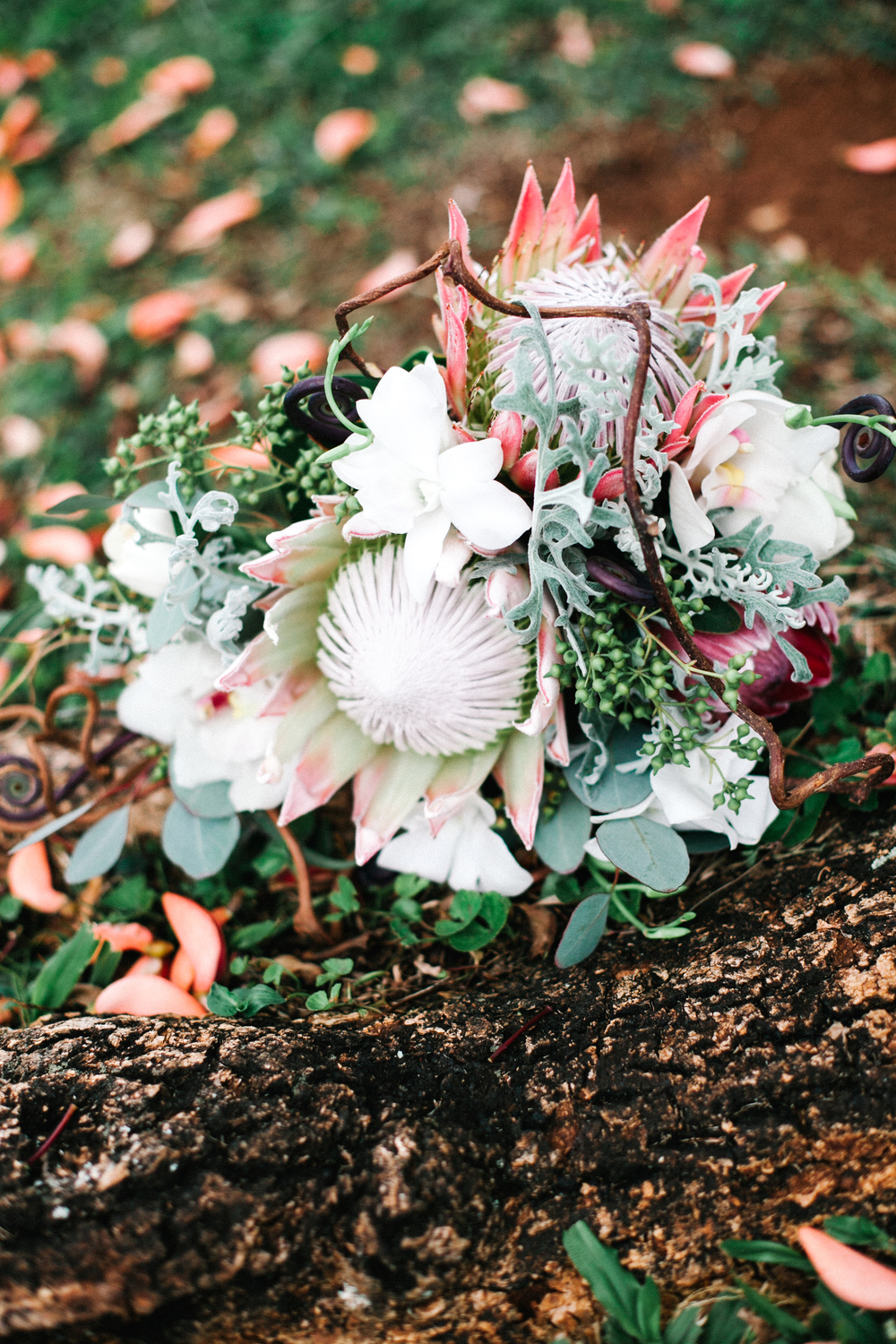 Mary Claire Photography-10.jpg