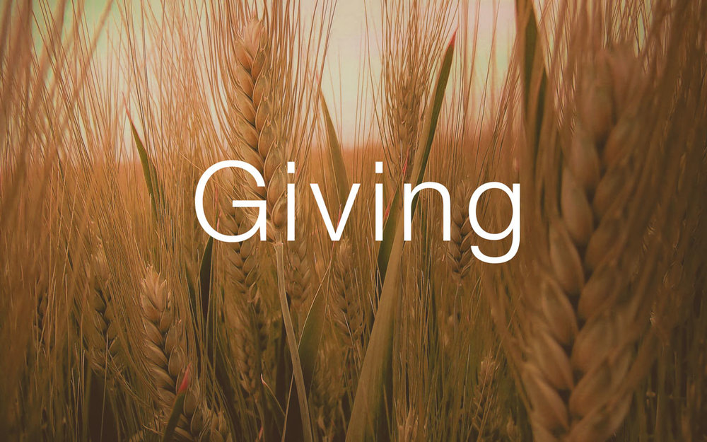 GIVING     (Cathy Todt)