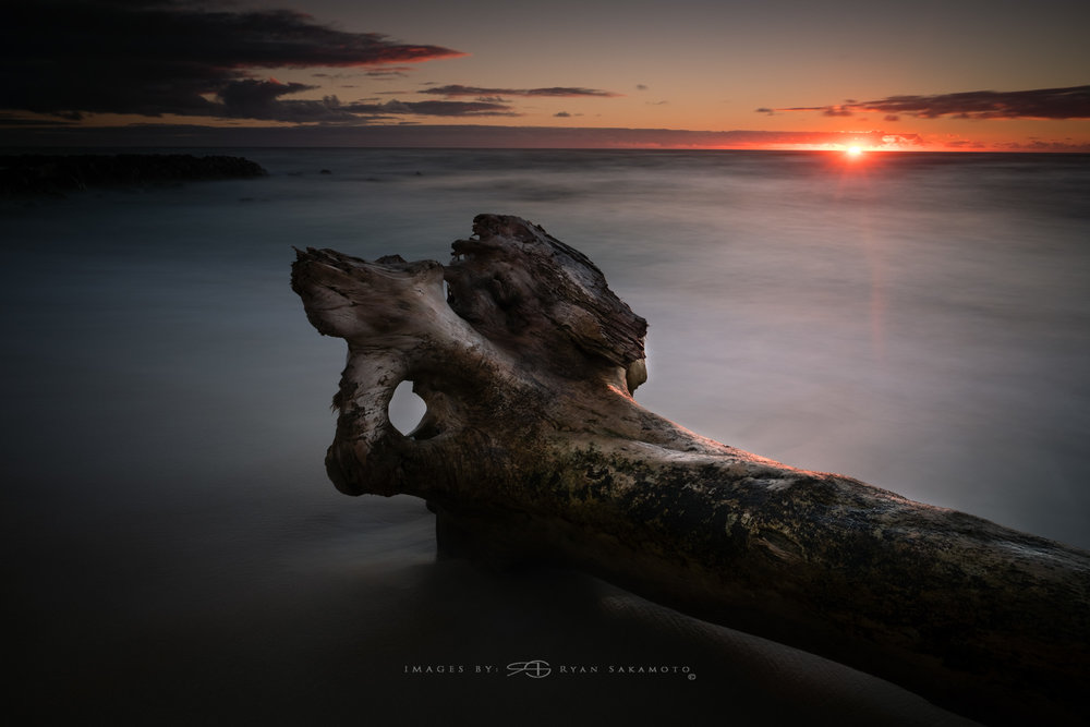 Kauai Driftwood Sunrise Lee Filter Big Stopper & 3 stop medium grad Fuji XPro 2    |    30 sec.    |    f/8 |    ISO 200    |     XF16mm f/1.4 R WR Edited in Lightroom & Photoshop CC 2015 Copyright 2016 Ryan Sakamoto, All rights reserved