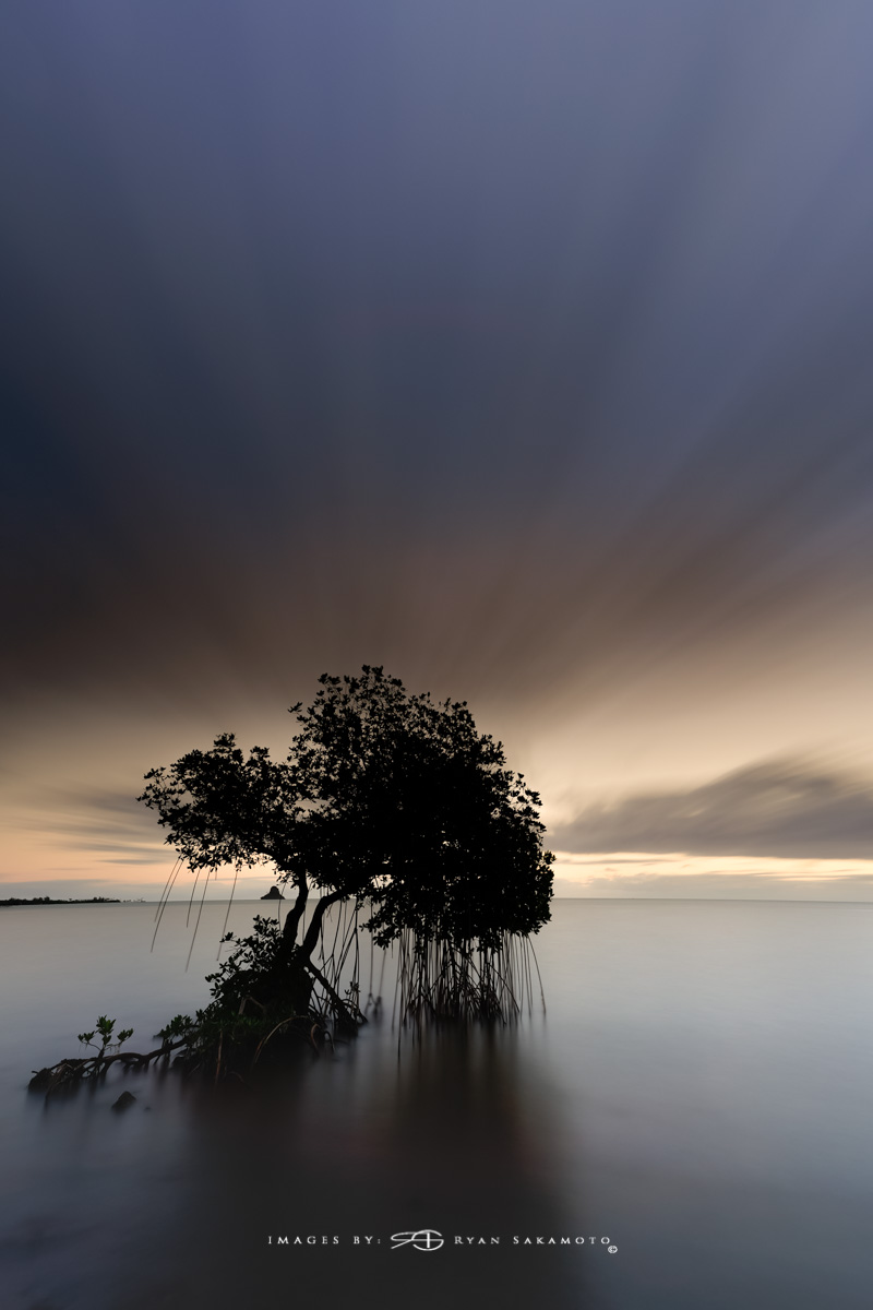 Sunrise from Waiahole, Honolulu, Hawaii  Sony A7R III    |    60 sec.    |    f/8   |   ISO 100 |   Sony FE 16-35mm GM F/2.8    BREAKTHROUGH PHOTOGRAPHY X4 stacked filters, 10-stop 100x100mm ND, 3-stop hard reverse 100x150  Edited in Lightroom Classic & Photoshop CC 2018 Copyright 2017 Ryan Sakamoto, All rights reserved