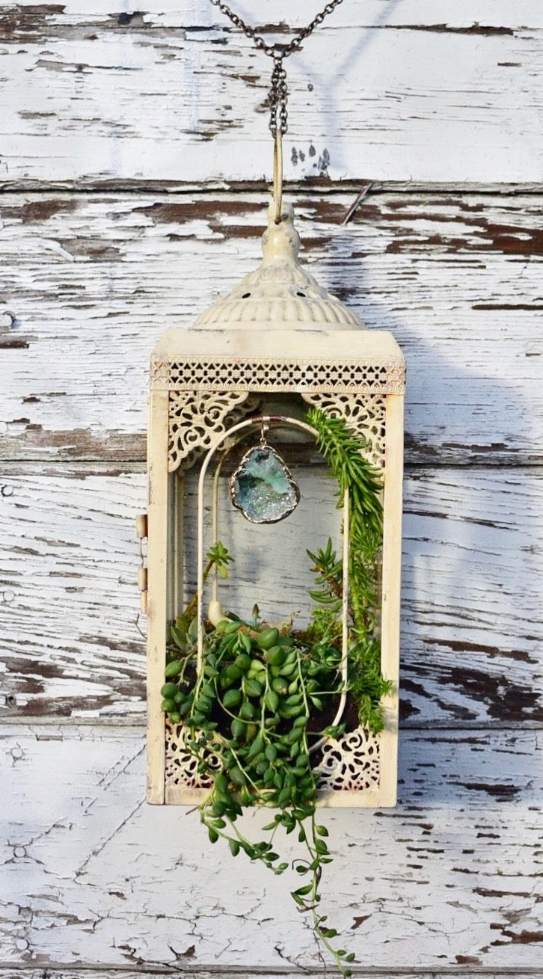 "Bones & Crystals    up-cycled metal lantern frame with hanging succulent garden featuring porcelain bull skull and hanging crystal  25"" x 6"" x 6"""