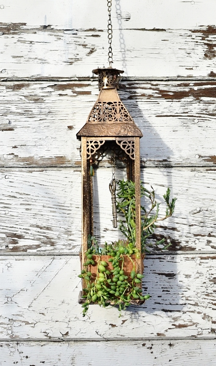 """Secret Garden   up-cycled tin lantern with hanging succulent garden and key shrine  25"""" x 6"""" x 6"""""""