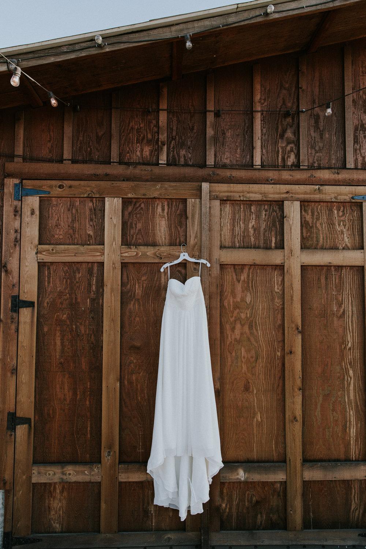 gunnels-wedding_8239.jpg