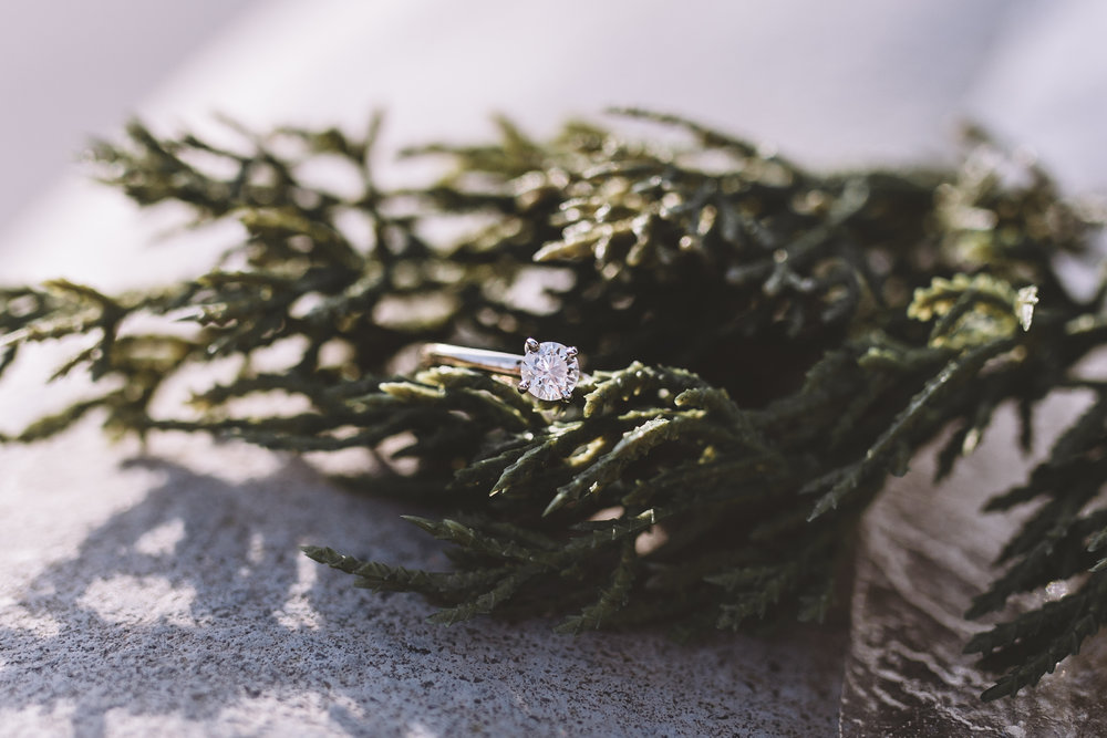 gunnels-wedding_8354.jpg