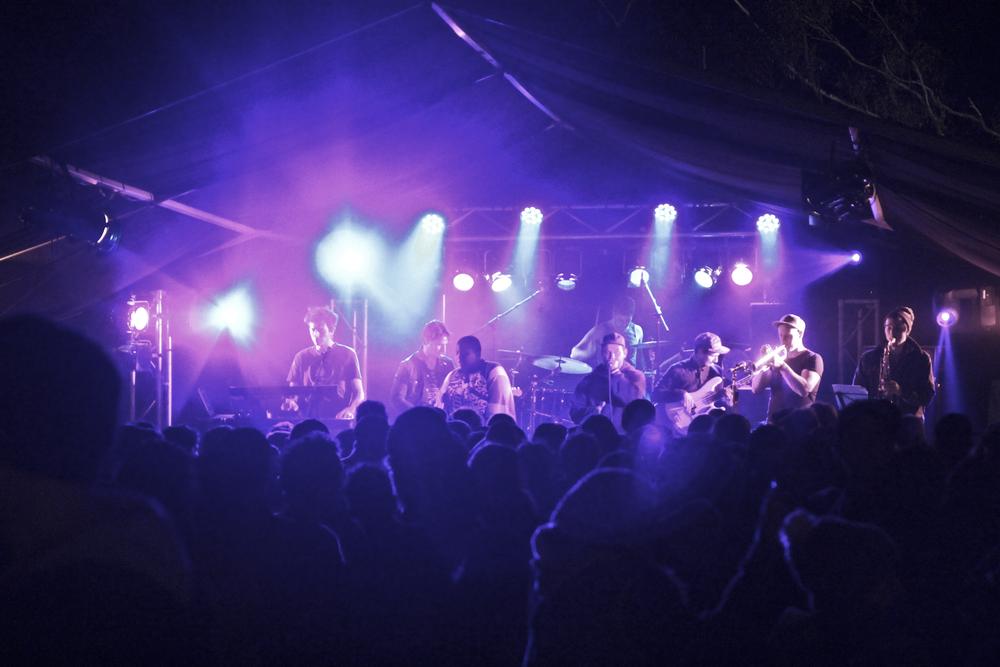 Blenheim Fest ED.jpg