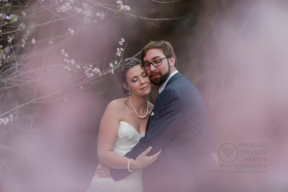 Beautiful wedding photo in blossoms