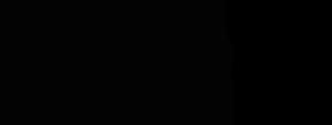 5WHY-V2-Black-Transparent-300px-1.png