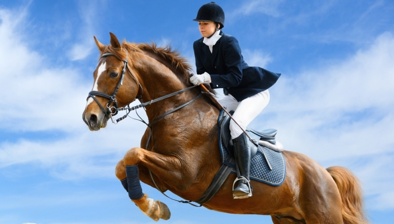horseriding jump.jpg